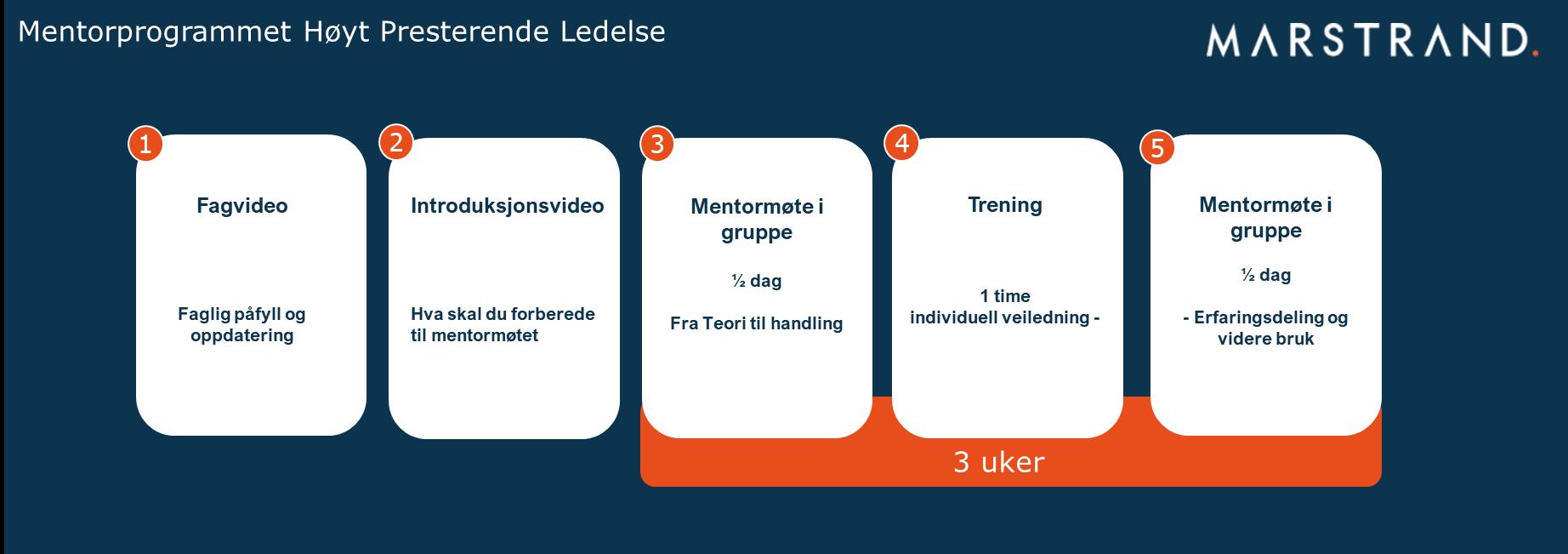 Mentorprogrammet høyt presterende ledelse HPL figur modul